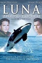 Image of Luna: Spirit of the Whale