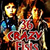 The 36 Crazy Fists (1983)