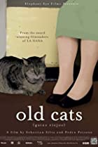 Old Cats (2010) Poster
