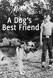 A Dog's Best Friend Poster