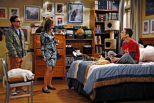 Johnny Galecki, Laurie Metcalf, and Jim Parsons in The Big Bang Theory (2007)