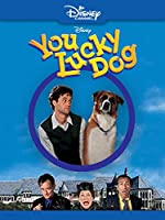 You Lucky Dog(1998)