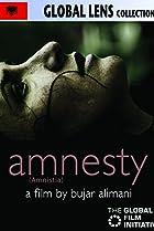 Image of Amnesty
