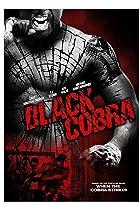Image of Black Cobra
