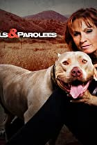 Image of Pit Bulls and Parolees
