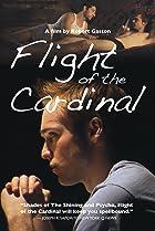 Image of Flight of the Cardinal