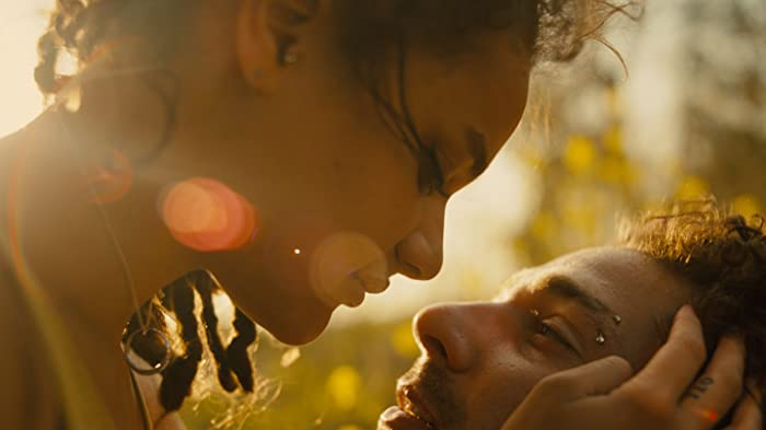 Shia LaBeouf and Sasha Lane in American Honey (2016)