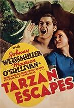Primary image for Tarzan Escapes