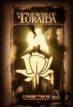 The Rose of Turaida
