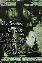 Image of Das Geheimnis der schwarzen Witwe