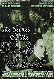 Das Geheimnis der schwarzen Witwe Poster