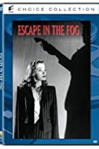 Image of Escape in the Fog