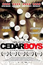 Image of Cedar Boys