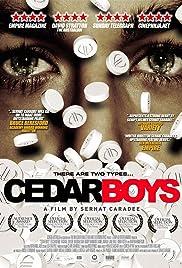 Cedar Boys(2009) Poster - Movie Forum, Cast, Reviews