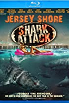 Image of Jersey Shore Shark Attack