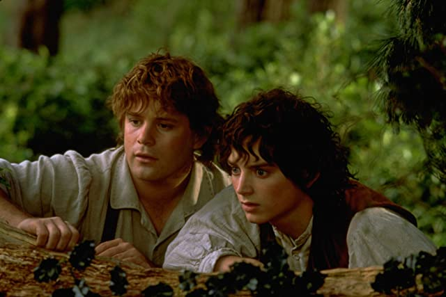 Sean Astin and Elijah Wood in The Lord of the Rings: The Fellowship of the Ring (2001)