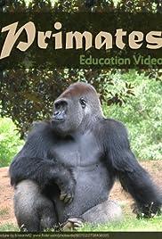 Primats Poster