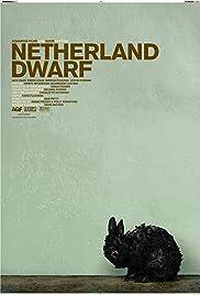 Netherland Dwarf Poster