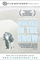 Image of Wolves in the Snow