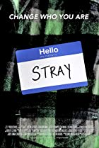 Image of Stray