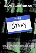 Primary image for Stray