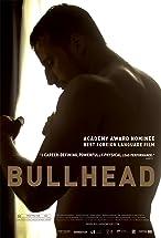 Primary image for Bullhead