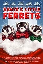 Image of Santa's Little Ferrets
