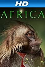 Primary image for Africa