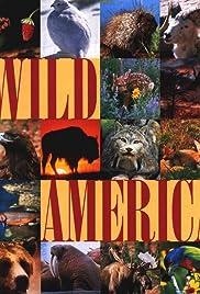 Wild America Poster - TV Show Forum, Cast, Reviews