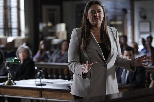 Camryn Manheim in Harry's Law (2011)