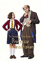 Image of The Incredible Adventures of Professor Branestawm