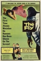 Image of The Fly