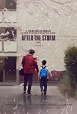 After the Storm(2016)