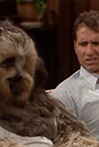 Image of Married with Children: Buck Can Do It