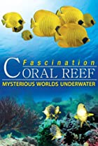 Image of Fascination Coral Reef: Mysterious Worlds Underwater