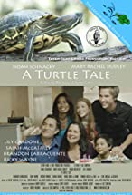 Primary image for Turtle Tale