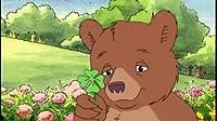 The Greatest Show in the World/Lucky Little Bear/Little Bear's Tall Tale