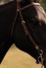 Heartland gift horse tv episode 2008 imdb gift horse poster negle Image collections