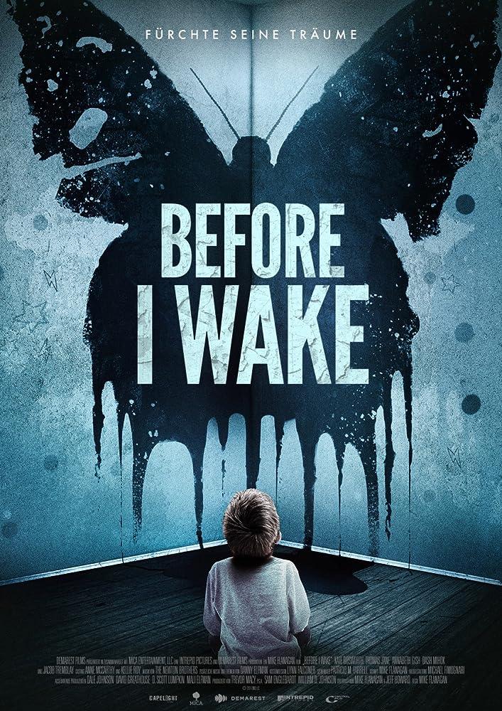 Înainte de a Wake  ( 2016 ), filme online subtitrat în Română