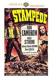 Stampede Poster