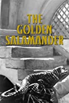 Image of Golden Salamander