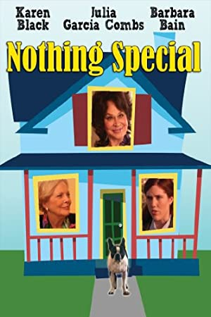 Nothing Special (2010)