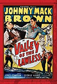 Valley of the Lawless Poster