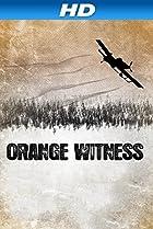 Image of Orange Witness