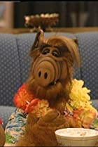 Image of ALF: Somewhere Over the Rerun