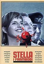 Stella í framboði