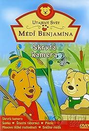 The Secret World of Benjamin Bear Poster