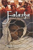 Image of Falasha