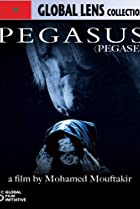 Image of Pegasus