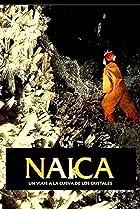 Image of Naica, viaje a la cueva de los cristales
